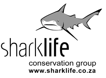 Sharklife Conservation Group